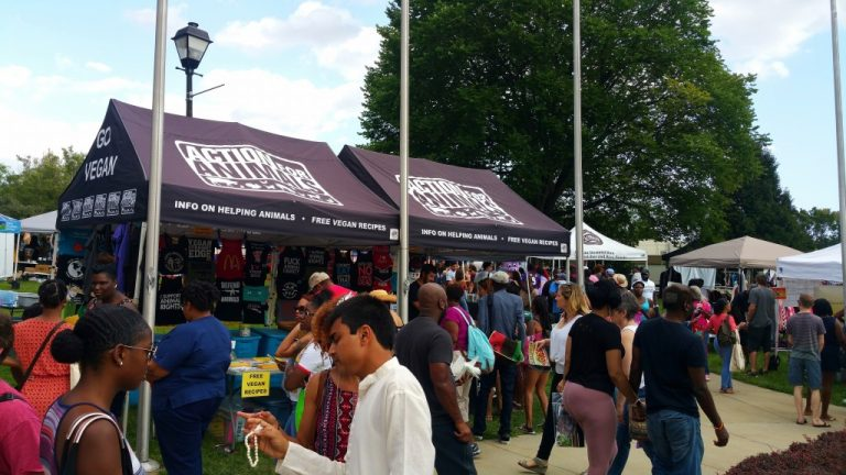 swarm of people gathered in a local food fair